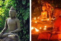 BuddhaCoach / Avonturenpad van het leven