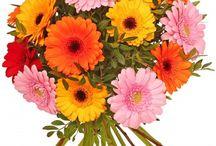 Collection Fête des Grand-mères www.les-ateliers-fleurs.fr à partir de 19,90 €