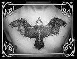 Corvão - Tattoo