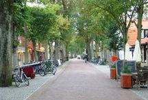 Vlieland~ The Netherlands