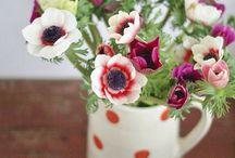 Bloemen in een...