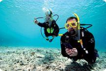Shore Diving in Australia / Lets Go Adventures offers shore diving in Nelson bay, Port Stephens, Australia.