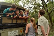 Falaza is Family Friendly / Not only are little ones able to go on game drives for the ultimate bush experience (at 50% of the adult rate), our trained guides can take them to explore the wonders of the night sky and star-gazing as well as 'frogging' – which kid could resist these lively amphibians? http://falaza.co.za/the-lodge/family-friendly-game-lodge-safari-hluhluwe/