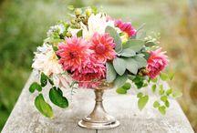 Flowers / by Stephanie Peak