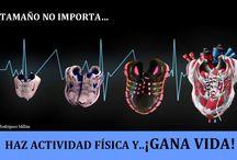 HAZ ACTIVIDAD FÍSICA..Y ¡GANA VIDA! / Cartel expositivo para incentivar la realización de actividad física.