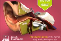 Did you know? / Have you ever know about special function and secrets of human bodies? Look and have a fun with us!
