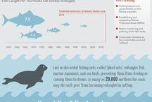 Угрозы океану
