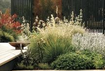 Jardin Hossegor