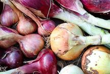 Knowing Your Onions.... / How to grow, store and cook all the beautiful types of alliums, onions, garlic, chives, leeks and garlic chives...