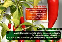Plantas y frutas y la salud