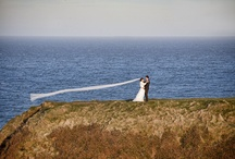 Contemporary wedding photography / All contemporary ideas related to wedding photography