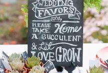 Wedding Ideas / Random ideas for my wedding! / by Sherrie Nguyen