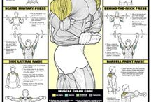MUSCLES! / Body and Mind Health