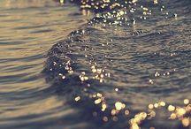 sea +