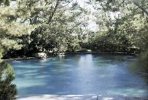 Pools / by Southern Bella Paperie