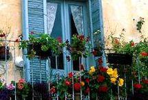 Doors and Windows / by Chrissy Burton