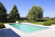 Zwembad New home