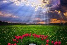 Stunning photos!