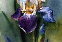 Obrázky květin,přírody