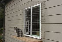 Cat enclosure for windows / Cat enclosure for Windows
