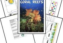 Teach ~ Oceans/Seas/Lakes/Ponds/Rivers/Creeks