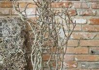 arreglos ramas