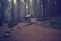Cabin Fever / There are elements of intrinsic beauty in the simplification of a house built on the log cabin idea.