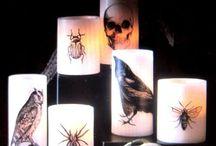 Spooky Spirit of Halloween
