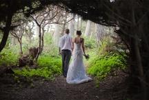 Mendocino Weddings