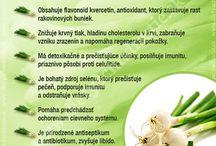 bylinky, zelenina a ovoce pro zdraví