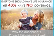 Insurance - Life / by Renee Shannon