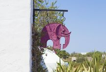Galeria Elefante