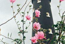 """Дзюсан (Juusan) / Вдохновляющие картинки по вселенной романа """"Дзюсан. Академия-фантом"""""""