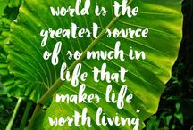 Inspiring Quotes / Take a moment to look through these lifestyle quotes that channel positive thinking.