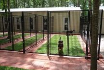 Dog yards, kennels and supplies / by Kathleen Ann