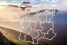 Poitou Charentes Terroir - Ile de France® Cheese
