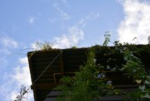Brise Vegetal / O Bise Vegetal é um sistema modular composto por contêineres dispostos na parte externa do prédio, onde as plantas, em geral trepadeiras, são conduzidas por cabos de aço inoxidável. Contribui para uma maior durabilidade dos prédios ao projetar sombra e diminuir a amplitude térmica.