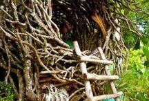 bird nest play house