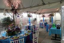 Mendal Mitzvah at Scholastic Greenhouse & Terrace / by Scholastic Event Services
