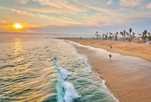 I miss Cali / by N LaRochelle