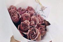 Flowers ❥