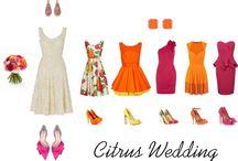 Moodboard (Wedding & Honeymoon Fashion)