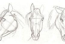 Heste tegning