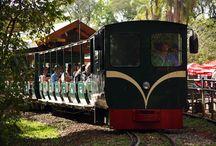 Tren ecológico de la selva / El Tren Ecológico de la Selva se diseñó y construyó para el desplazamiento de los turistas en el Área Cataratas del Parque Nacional Iguazú.