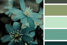 Colour.