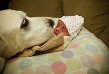 Humans best friends