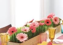 Spring Decorating / Here are some of our favorite Spring Decorating ideas!