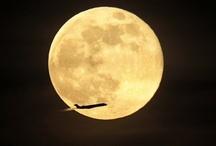 moon / by Mitsuki Bun