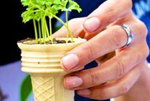 Gardening for Kids / Ideas to get kids interested in gardening