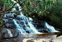 Smoky Mountains National Park / Random photos in and around the Smoky Mountains National Park.